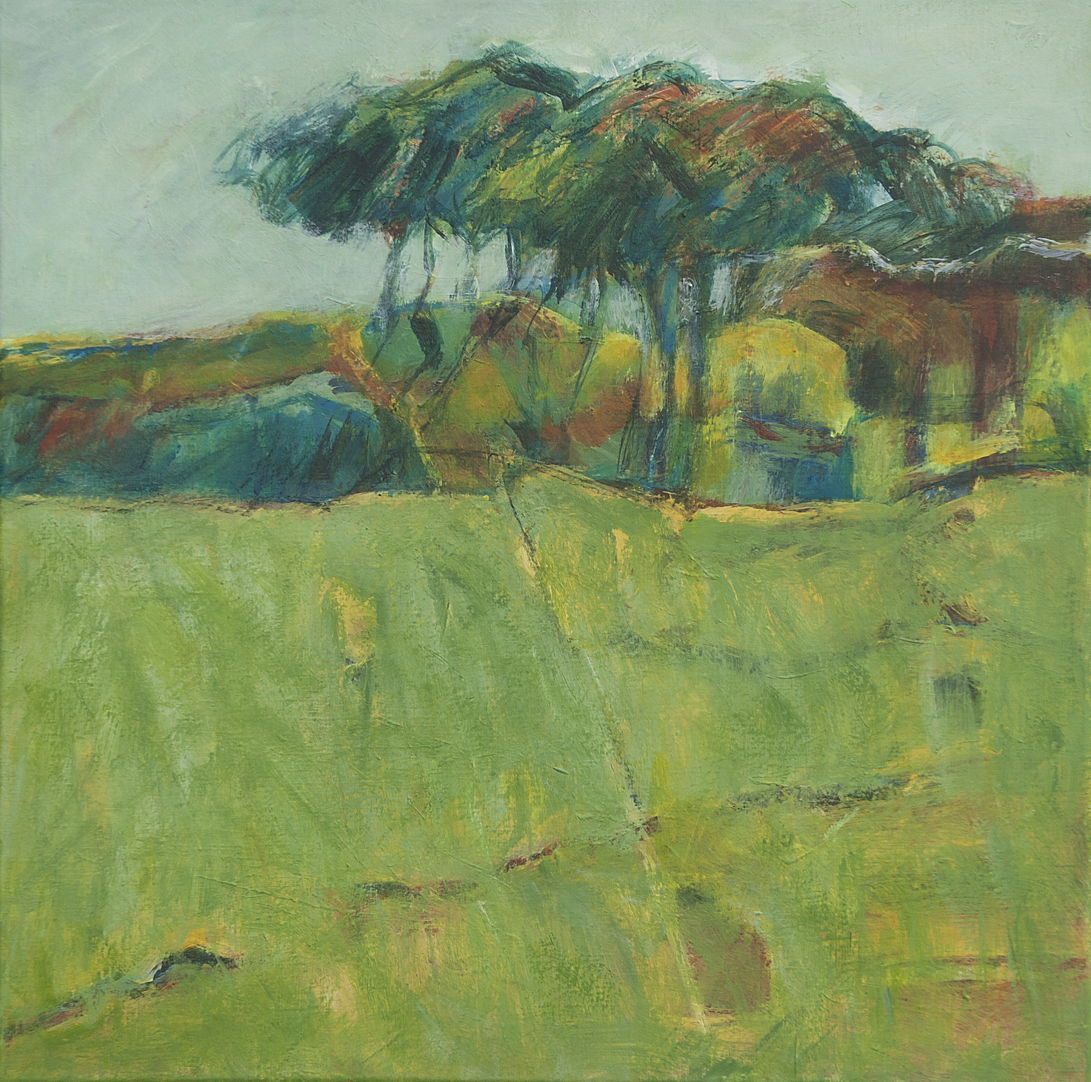Green Fields – 60 x 60
